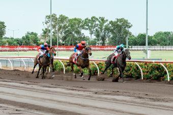 Race 2 Culzean.2