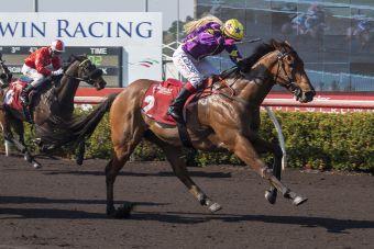 Race 4 Hattan Man